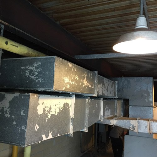 Commercial Mold Remediation Utica NY
